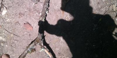 imag0523-04 mars 2013